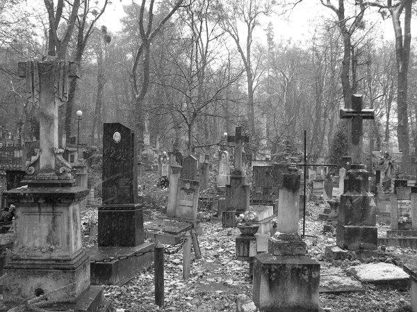 """Результат пошуку зображень за запитом """"цвинтар"""""""