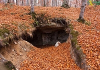 Урочище Прийма осінь