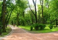 охайні вулички в парку