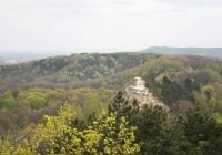 Лиса гора з Високого замку