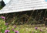 Фото. Пилипець – місце найкращого гірського відпочинку в Карпатах