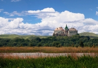 Олеський замок панорама