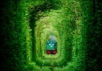 Фото. Клевань. Тунель кохання