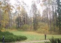 Фото. Тростянецький дендропарк на Чернігівщині
