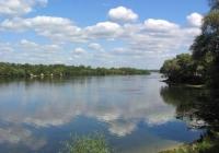 Фото. Канівський природний заповідник