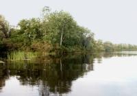 Фото. Дніпровсько-Орільський природний заповідник